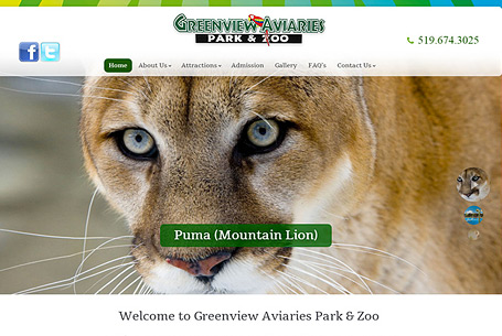 Greenview Aviaries – Website Design